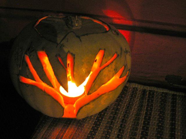 Kiwi Halloween on Ponsonby Rd