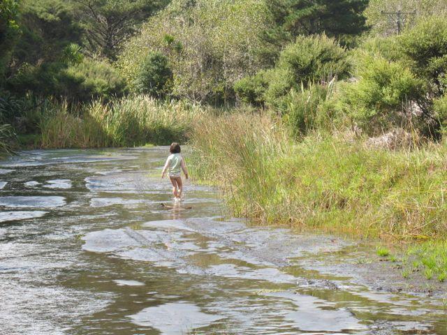 Adventure with a splash