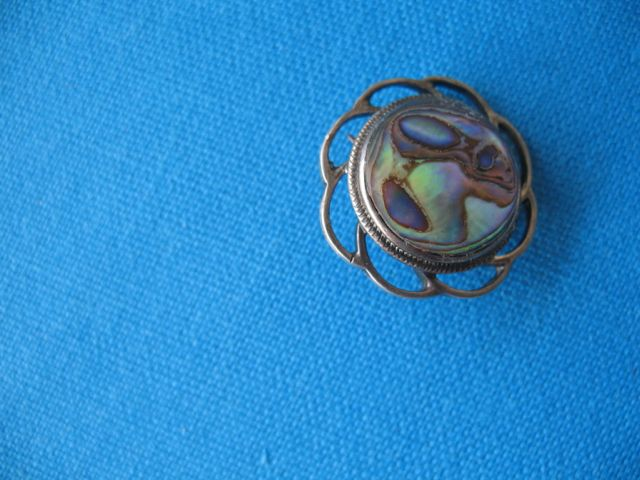 The story of the paua shell brooch (Part Three)
