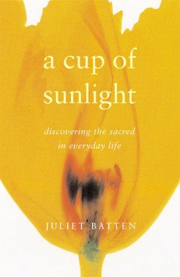 Sunlight cover copy