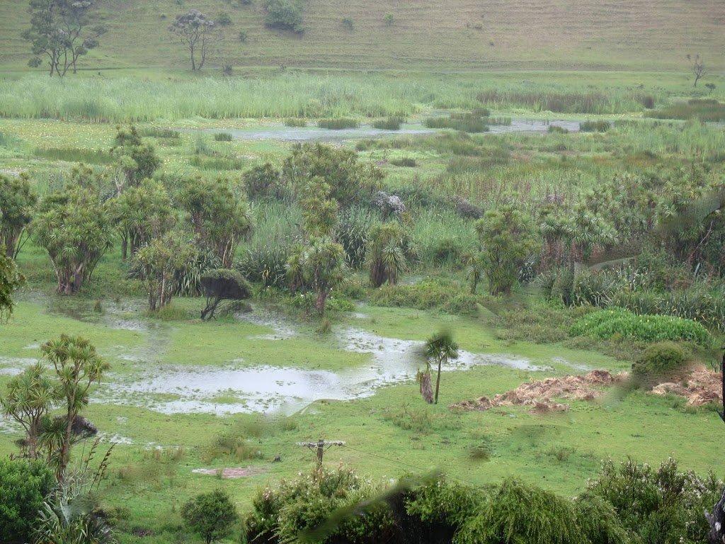 A wet, wet world