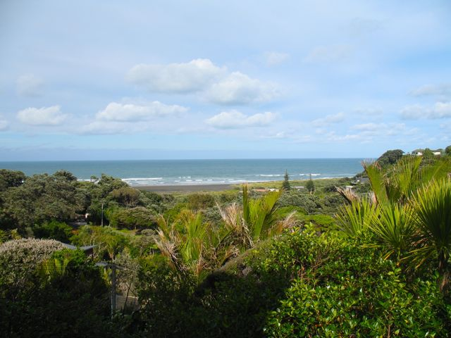 Midlife at Piha