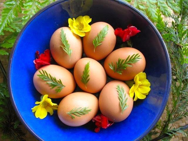 Equinox eggs
