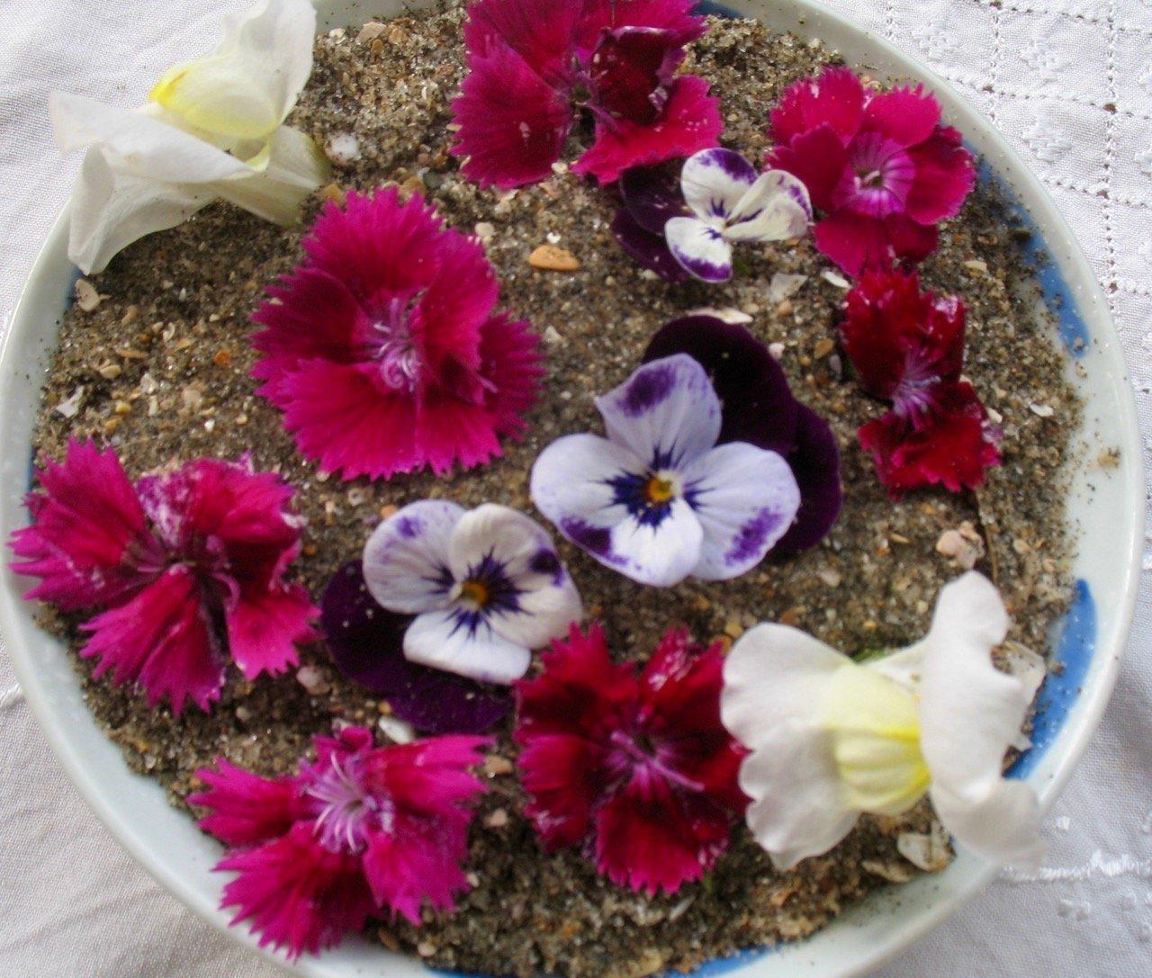 Sand Saucer Juliet Batten